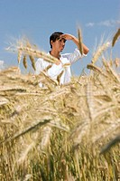 Young man standing in cornfield, hand on head