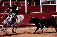Portugal, Algarve Province, tourada in Lagos arenas