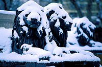 France, Bouches-du-Rhône (13), Aix-en-Provence in winter, lions of La Rotonde fountain, sculptures