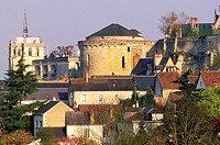 France, Indre-et-Loire (37), Amboise, town and castle as seen from Clos Luce