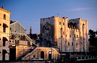 France, Deux-Sèvres (79), Niort city, Donjon Museum and the central food market in the background