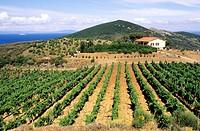 europe, italy, tuscany, elba island