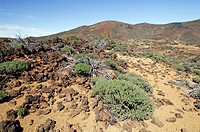 spain, canary islands, tenerife, teide national park