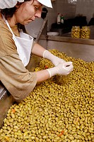 Woman packing olives. Mediterranean Foods. Spain.