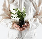 Scientist Holding Plant in Gloved Hands