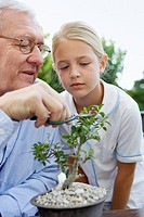 Girl Watching her Grandfather Prune Plant