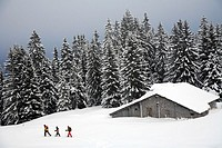 Snow shoeing in the Rosenlaui-vallei  Bernese Oberland  Switzerland.