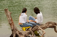 High angle view of a young couple sitting on a tree over a lake