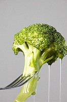 Close-up of a wet piece of broccoli on a fork
