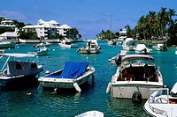 Several boats are harbored in the ocean, Bermuda