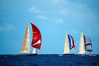 Sailboats participate in the Heiniken Regatta on the Dutch side of the island of St. Maarten in the Caribbean