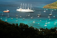 Scenic view of a large group of sailboats in the sea, The Grenadines