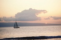 Sail boat in the sea, Hawaii, USA