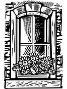 Window with window box of flowers, black and white
