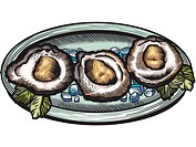 A plate of oysters on the half shell