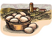 An illustration of a basketful of farm fresh eggs