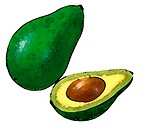 A sliced green shiny avocado