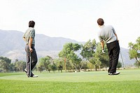 Two men playing golf on green