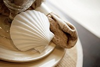 Detail of Place Setting with Shell