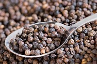 Close-up of a spoon full of black peppercorn