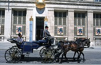 Horse cart in front of museum, Freyung, Vienna, Austria