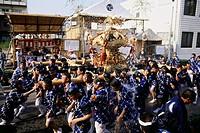 Geo , Japan, Brauchtum, Fukugawa Matsuri, Fest seit 1642, junge Männer tragen einen Mikoshi Tragbarer Shinto Schrein durch die Straßen von Tokio, Fest...
