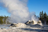 Old Faithful Geyser. Yellowstone National Park. Wyoming. USA
