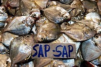 Fish sap-sap. Farmers market. Manila. Philippines
