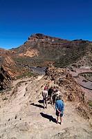 Spain, Canaries, island Tenerife, Parque Nacional Del Teide, Pico Del Teide, hikers,