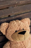 Teddy bear on a wooden bench, close-up