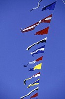 Flags of various countries fluttering