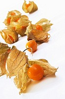 Physalis with husks