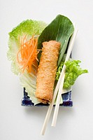 Spring roll on salad China