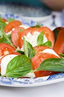 Insalata caprese Tomatoes and mozzarella, Italy