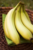 Fresh bananas in a basket