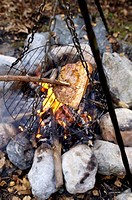 Meat on grill at campfire