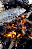 Trout on grill at campfire