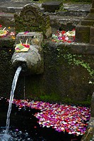 Indonesia, Bali, near Ubud, Tirta Empul Temple, sacred public baths