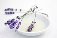 Lavender flowers on plate, close-up