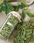 Lovage, fresh and dried in jar