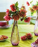 Lenten roses in glass vase on table laid for coffee