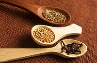 Wooden spoons with mustard seeds, caraway seeds and cloves