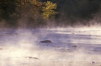 Housatonic River with Morning Mist