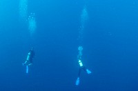 Two divers suspended in open blue water in Sea of Cortez, Mexico