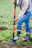 Gardener with shovel. Agricultural works. Gipuzkoa, Euskadi. Spain.