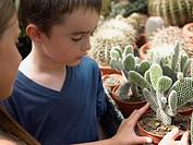 Children looking at cacti