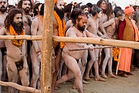 Sadhus after the procession reached the banks of the Ganges. They are waiting for the let go given by the police to rush into the water