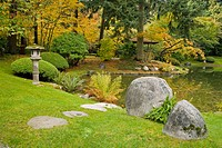 Boulders w/ ferns at pond edge; family viewing pavilion & cherry tree under Douglas_fir bkgnd, autumn (Prunus sp.; Pseudotsuga menziesii). Nitobe Memo...