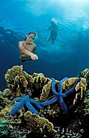 Two snorkeling girls, Indonesia, Bali, Asia, Indian Ocean, asia, bathe, bathing, beings, complete body, couple, day, d