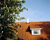 Tiled roof with window